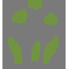 icon-florais